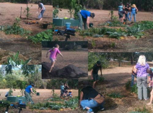 Gardening-23Mar2014-500x370